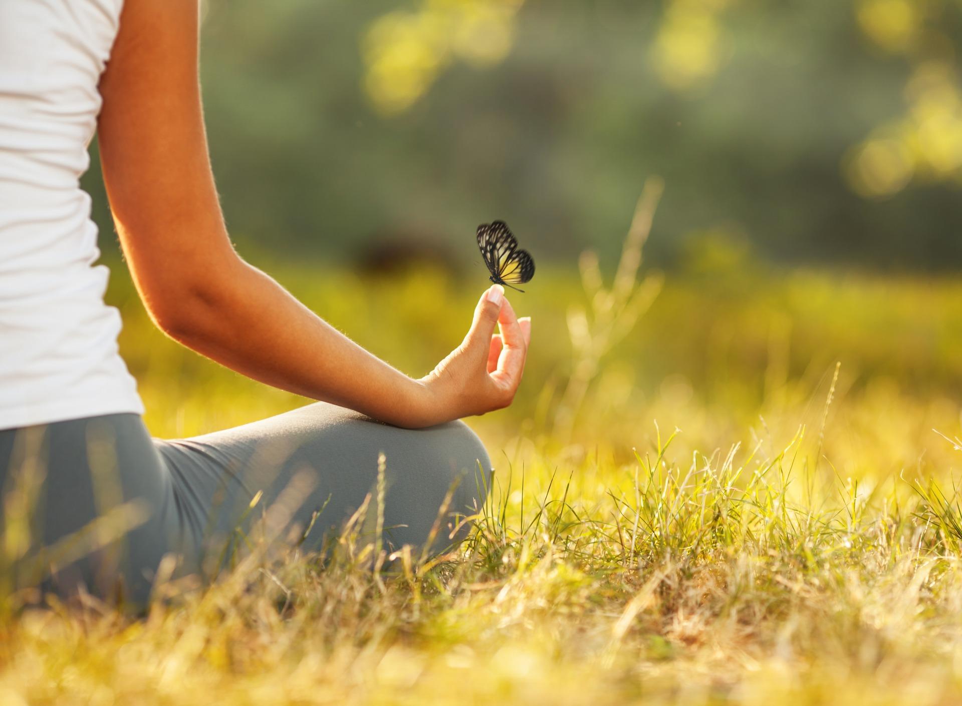 Równowaga i harmonia