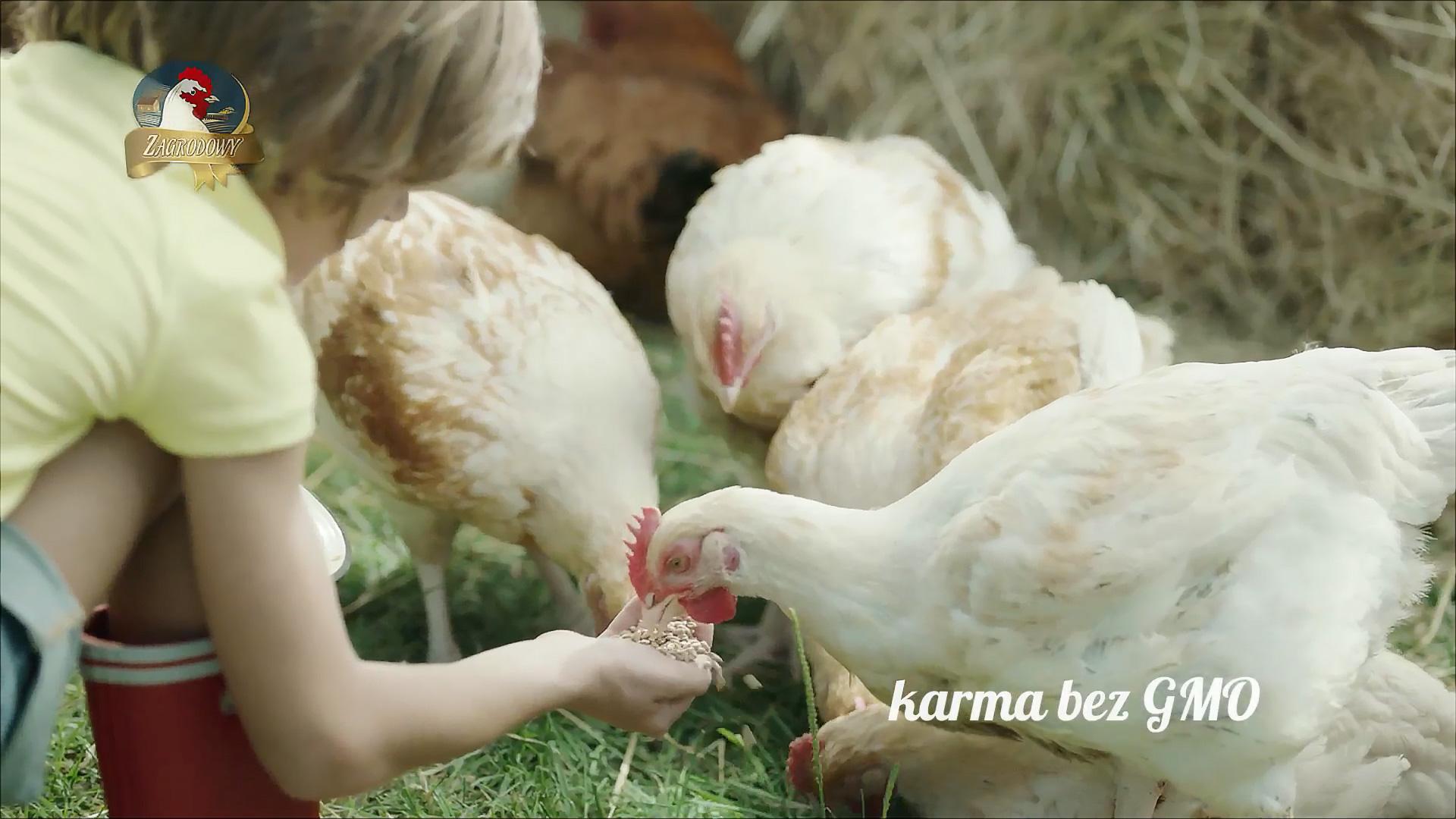 Oryginał jest tylko jeden – nowa kampania telewizyjna marki Zagrodowy